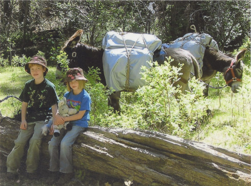 Wilderness donkey packing trips with the family